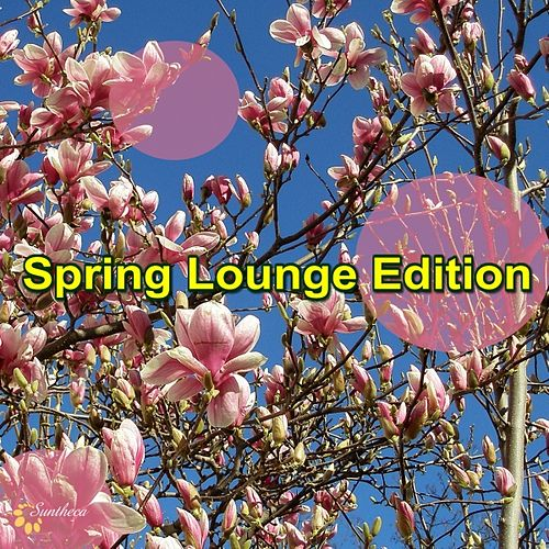 Spring Lounge Edition by Various Artists