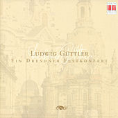 TELEMANN, G.P.: Concerto in D major, TWV 53:D5 / VIVALDI, A.: Concerto for Viola d'amore and Lute (Virtuosi Saxoniae, Guttler) von Various Artists