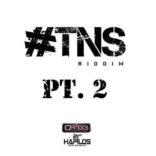 Play & Download #TNS Riddim Pt.2 by Various Artists | Napster