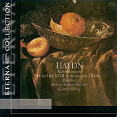 Haydn: Keyboard Concertos, Hob.XVIII:4 and 11 / Mozart: 9 Variations on a Minuet by Duport by Various Artists