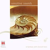 Play & Download Gluck, Mozart, Bach, Haydn, Vivaldi, Viotti, Händel: Sensitive Sounds by Various Artists | Napster