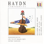 Play & Download HAYDN, J.: Symphonies Nos. 43, 45, 59 (C.P.E. Bach Chamber Orchestra, Haenchen) by Various Artists | Napster