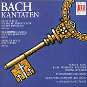 Play & Download BACH: Cantatas  BWV 106, 31 & 66 by Various Artists | Napster