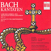 BACH, J.S.: Cantatas - BWV 21, 137 (Rotzch) von Various Artists
