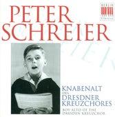 Bach, Cornelius, Mausberger & Schütz: Vocal Music von Various Artists