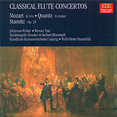 Play & Download MOZART, W.A.: Flute Concerto No. 2 / QUANTZ, J.J.: Concerto for Flute and Bassoon / STAMITZ, C.: Flute Concerto, Op. 29 (Tast, Walter, Konigstedt) by Various Artists | Napster