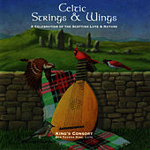 Play & Download Celtic Strings & Wings by Ben Tavera King | Napster