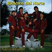 Play & Download Tragedia de Crucero by Los Rieleros Del Norte | Napster