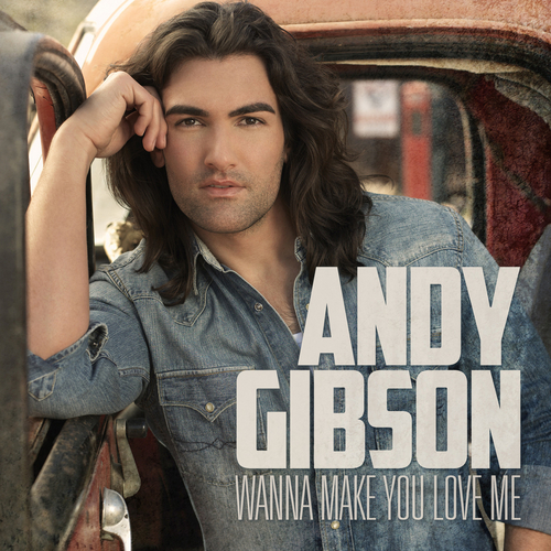 Play & Download Wanna Make You Love Me (Single) by Andy Gibson | Napster
