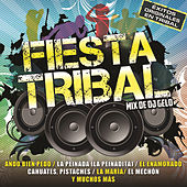 Play & Download Fiesta Tribal by Various Artists | Napster
