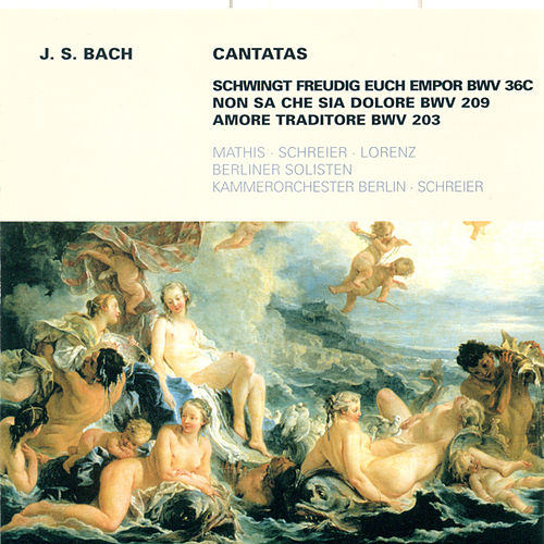 Bach: Cantatas - BWV 36c, 203, 209 by Various Artists