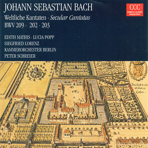 Bach: Cantatas - BWV 202, 203, 209 by Various Artists