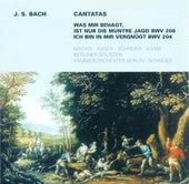 Johann Sebastian Bach: Cantatas - BWV 204, 208 (Schreier) von Various Artists