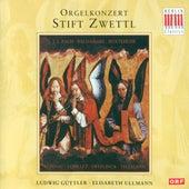 Play & Download Loeilleit, Kuhnau, Baldassare, Buxtehude, Bach, Sweelinck & Telemann: Organ Concerts by Various Artists | Napster