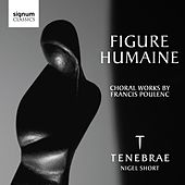 Figure Humaine by Various Artists