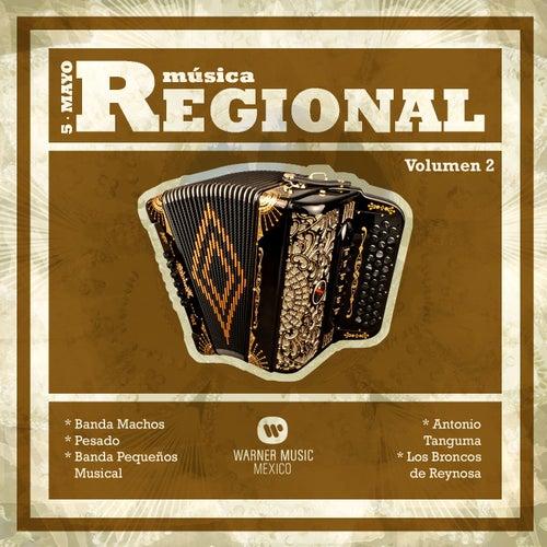 Musica Regional 'Cinco de Mayo' Vol. 2 by Various Artists