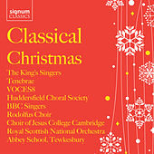 Play & Download Classical Christmas Collection by Various Artists | Napster