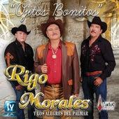 Play & Download Ojitos Bonitos by Rigo Morales y los Alegres del Palmar | Napster