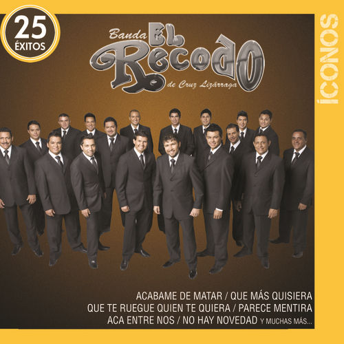 Play & Download Íconos 25 Éxitos by Banda El Recodo | Napster