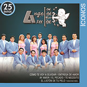 Play & Download Íconos 25 Éxitos by Los Angeles Azules | Napster