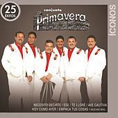 Play & Download Íconos 25 Éxitos by Conjunto Primavera | Napster