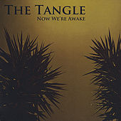 Play & Download Now We're Awake by The Tangle | Napster