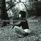 Dreaming Through The Noise von Vienna Teng