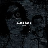 Play & Download Black Out by Giant Sand | Napster