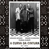 Play & Download A Curva da Cintura by Toumani Diabaté | Napster
