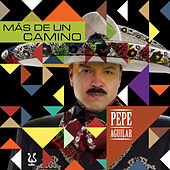 Play & Download Mas De Un Camino by Pepe Aguilar | Napster