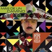 Mas De Un Camino by Pepe Aguilar