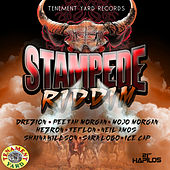 Stampede Riddim by Various Artists