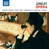 Play & Download Great Opera by Various Artists | Napster