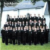 The Stockholm Boys' Choir (Stockholms Gosskör) by Stockholm Gosskor
