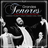 Play & Download Grandes Tenores by Various Artists | Napster