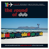 South Africa in Dub - rare and soundful pearls from South Africa in Dub by Various Artists