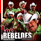 Play & Download Rebeldes de Nuevo by Los Rebeldes del Bravo | Napster