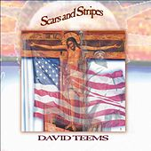 Scars and Stripes by David Teems