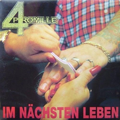 Play & Download Im nächsten Leben by 4 Promille | Napster