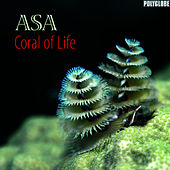 Play & Download Coral of Life by Asa | Napster