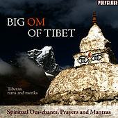 Play & Download Big Om of Tibet by The Tibetan Monks | Napster