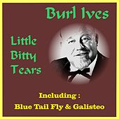 Play & Download Little Bitty Tears by Burl Ives | Napster