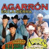 Play & Download Agarrón En La Sierra by Alegres De La Sierra Y Alameños De La Sierra | Napster