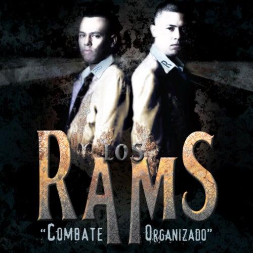 Play & Download Combate Organizado by Los Rams De La Sierra | Napster
