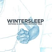 Nothing Is Anything by Wintersleep