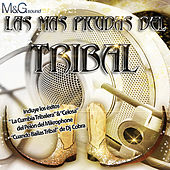 Play & Download Las Más Picudas del Tribal by Various Artists | Napster