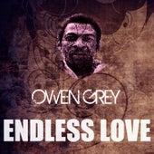 Endless Love by Owen Gray