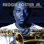 Play & Download Different Levels by Reggie Foster | Napster