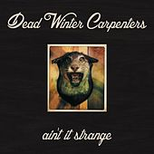 Ain't It Strange by Dead Winter Carpenters