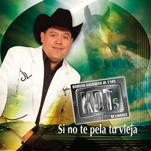Play & Download Si No Te Pela Tu Vieja by Homero Guerrero Jr. Y Los... | Napster